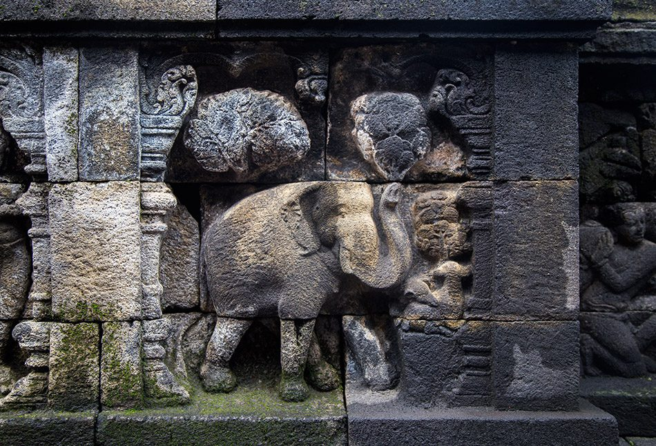 Fabian Fröhlich, Borobudur Temple, Relief with elephants