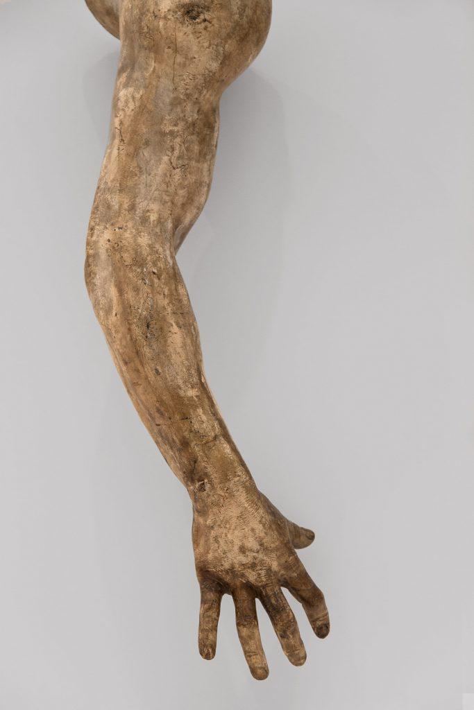 Ausstellung Nah, am Leben, 200 Jahre Gipsformerei, James-Simon-Galerie, Arm