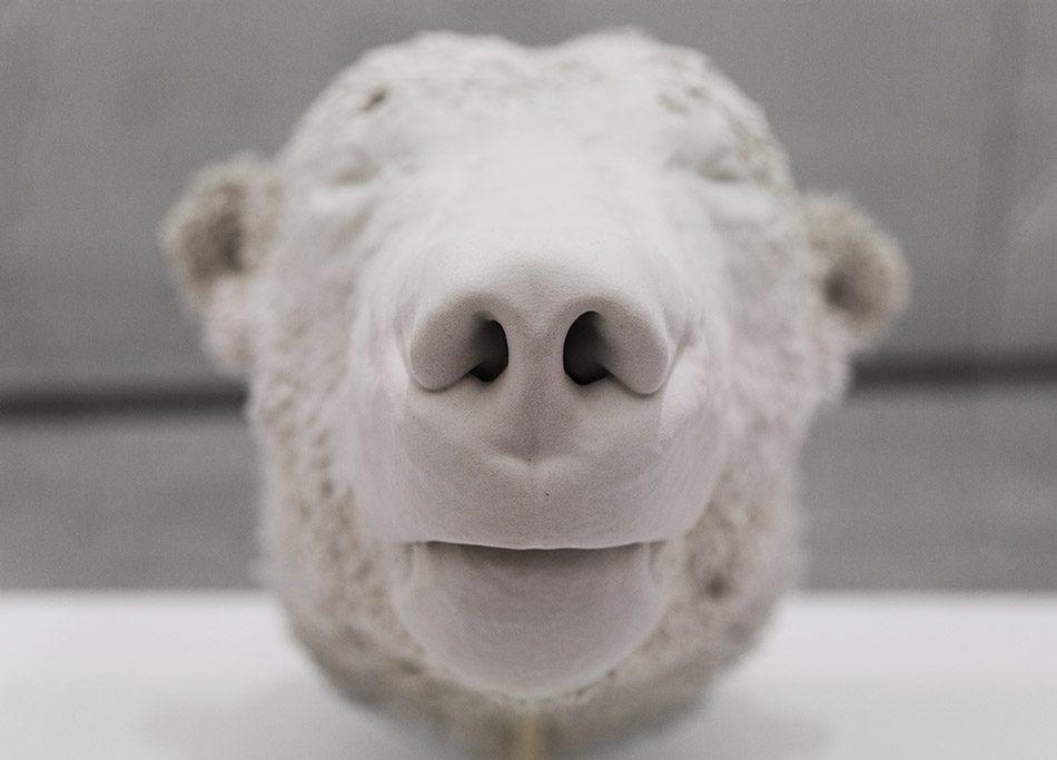 Ausstellung Nah, am Leben, 200 Jahre Gipsformerei, James-Simon-Galerie, Kopf des Eisbären Knut, 3-D-Druck