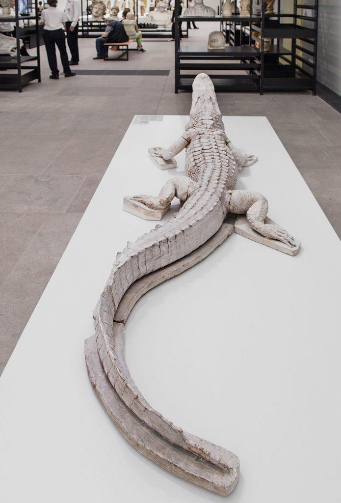 Ausstellung Nah, am Leben, 200 Jahre Gipsformerei, James-Simon-Galerie, Gipsabguss Krokodil
