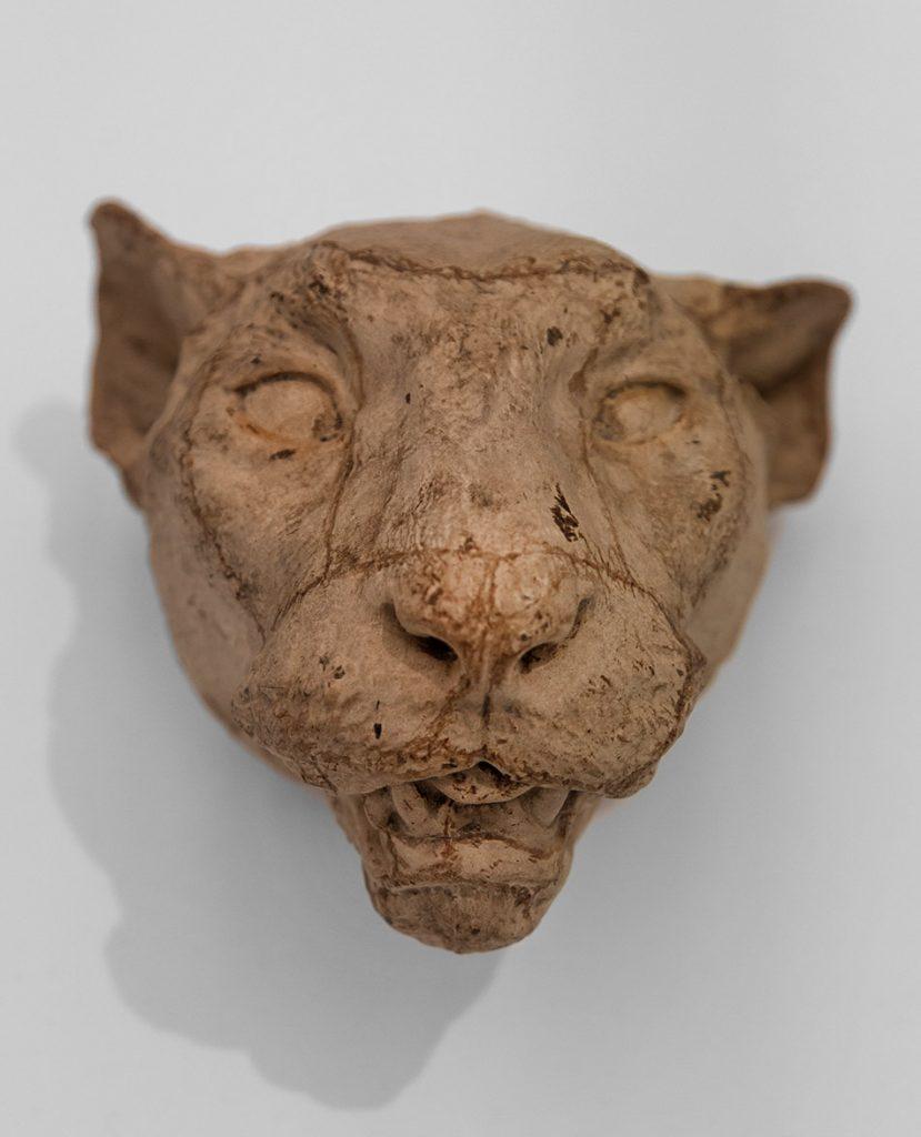 Ausstellung Nah, am Leben, 200 Jahre Gipsformerei, James-Simon-Galerie, Kopf eines Panthers