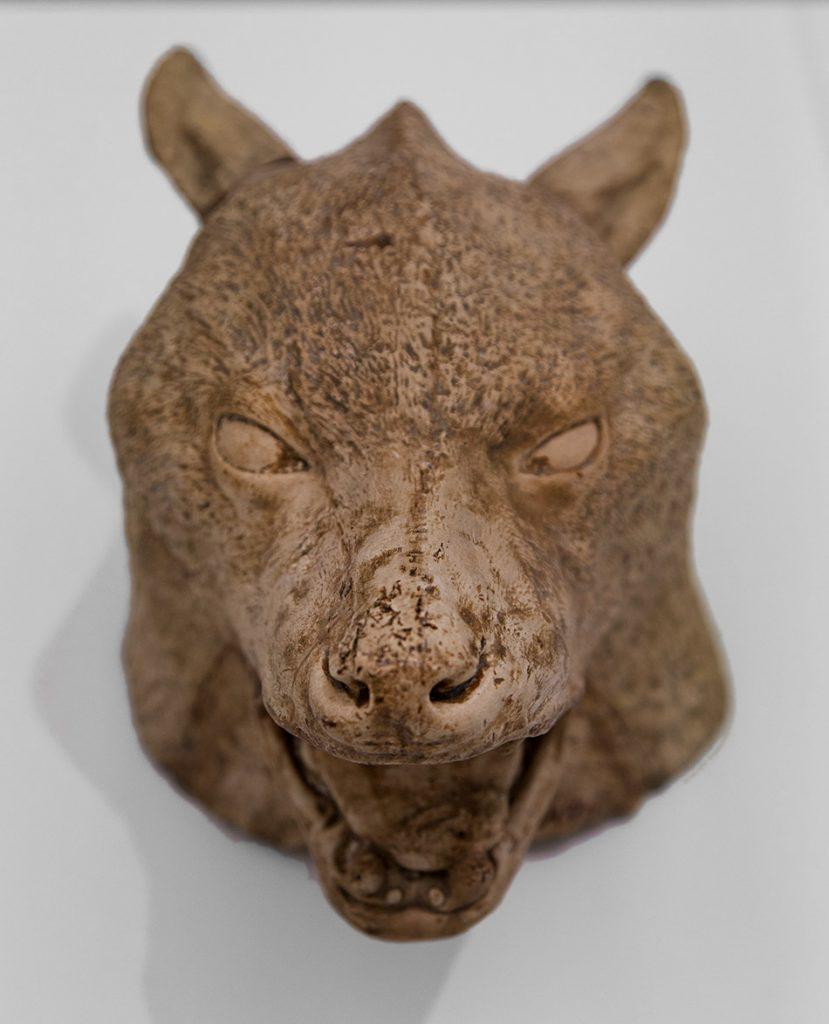 Ausstellung Nah, am Leben, 200 Jahre Gipsformerei, James-Simon-Galerie, Kopf eines Wolfs