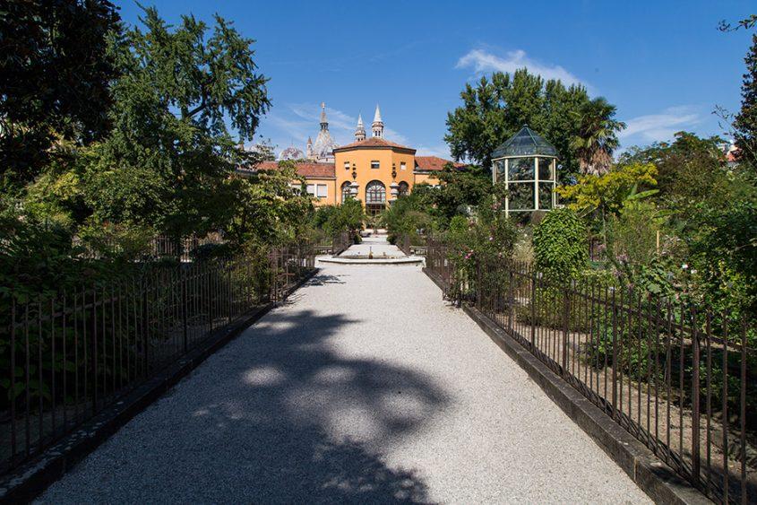 Fabian Fröhlich, Padova, Botanical Garden