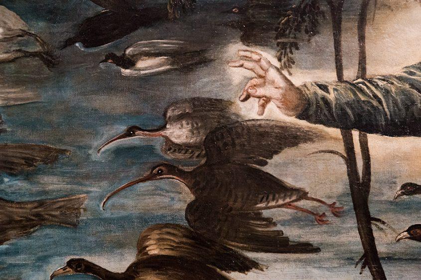 Gallerie dell'Accademia di Venezia, Jacopo Tintoretto, La creazione degli animali