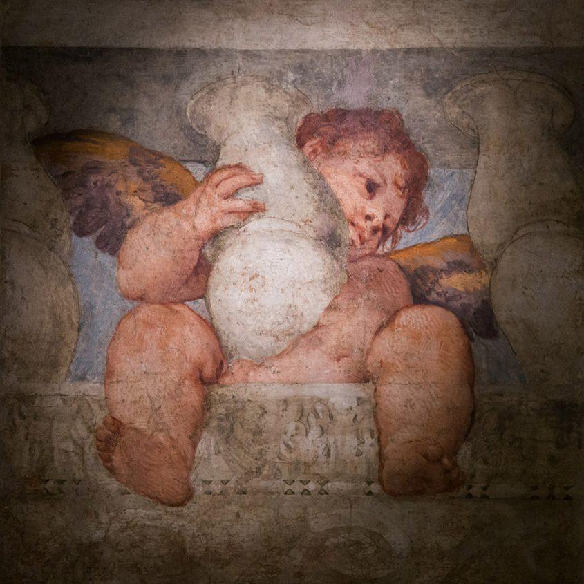 Fabian Fröhlich, Vicenza, Museo civico di Palazzo Chiericati, Veronese, Putto alati