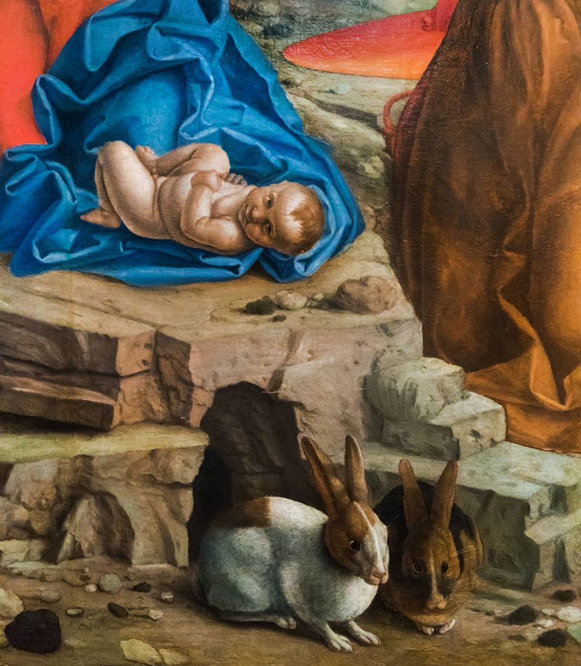 Fabian Fröhlich, Museo di Castelvecchio, Girolamo dai Libri