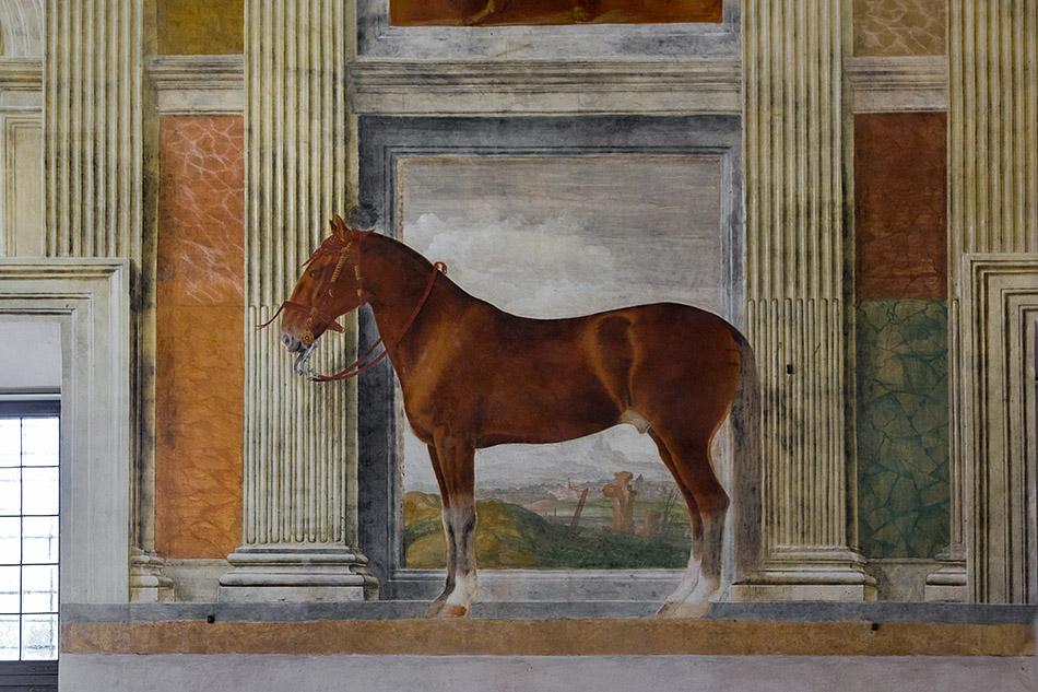 Fabian Fröhlich, Mantova, Palazzo Te, Hall of the Horses