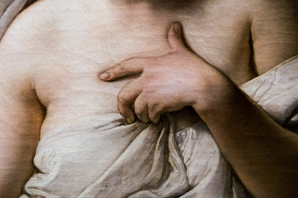 Fabian Fröhlich, Pinacoteca di Brera di Milano, Odalisca, Francesco Hayez