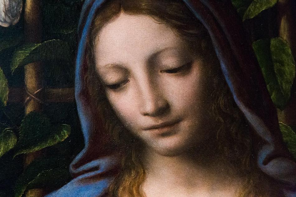 Fabian Fröhlich, Pinacoteca di Brera di Milano, bernardino Luini, Madonna con il Bambino (Madonna del Roseto)