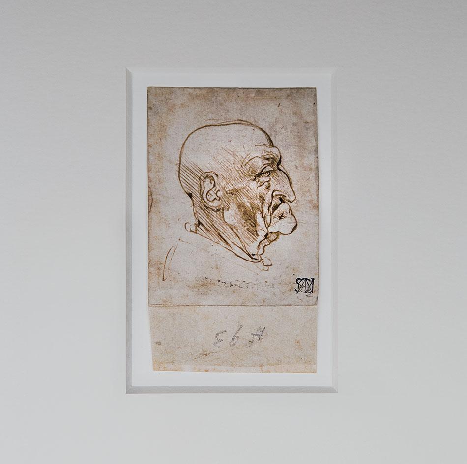 Fabian Fröhlich, Pinacoteca Ambrosiana, Milano, Leonardo da Vinci, Profile of a Man