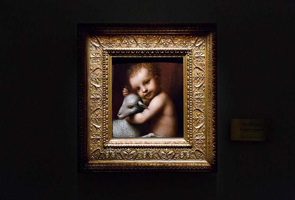 Fabian Fröhlich, Pinacoteca Ambrosiana, Milano, Bernardino Luini, The Infant Jesus with a Lamb