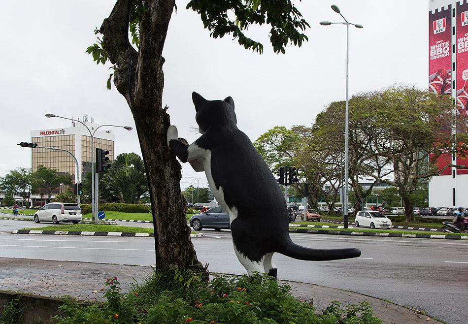 Fabian Fröhlich, Malaysia, Kuching, Cat at Jalan Padungan
