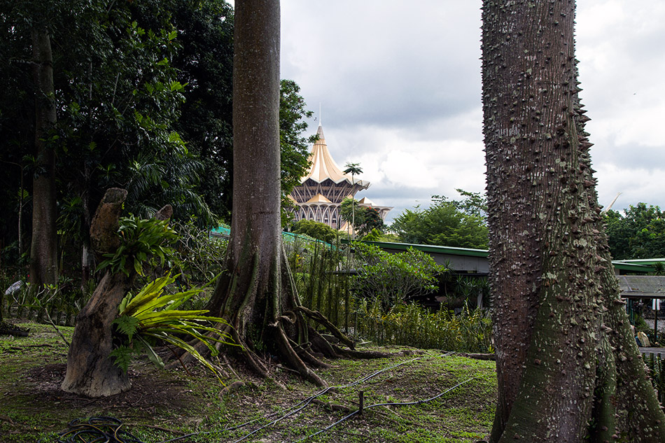 Fabian Fröhlich, Malaysia, Kuching, Orchid Park